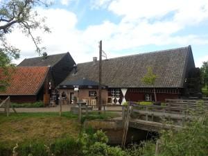 Olanda, itinerario ciclabile sulle tracce di Van Gogh