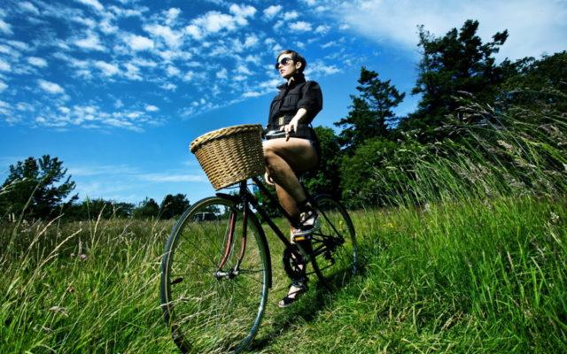 Al sole in bicicletta