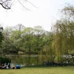 Sosta nel cuore del Vondelpark © Amsterdam Marketing
