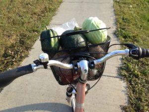 Delirio polacco: «Ciclisti e vegetariani simbolo dell'Europa marcia»