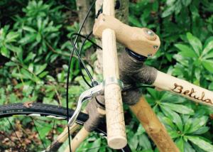 Betula: il bosco che rivive su due ruote