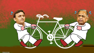 In India c'è il partito della bicicletta. Ma litiga sul logo