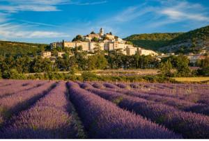 Cicloturismo in Provenza: in giugno, una settimana tra i colori del Luberon