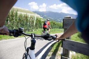 Bike to work e tempo libero: nel Cicloconcorso Alto Adige vale ogni km. Anche in ebike