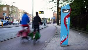 Utrecht testa l'onda verde per ciclisti, con conigli, mucche e tartarughe