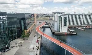 Ponte snake Copenhagen