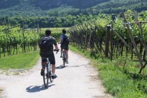 Magnalonga. Il 2 settembre in bici o a piedi tra le dolcezze dell'Alta Vallagarina
