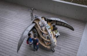 biblioteca a pedali