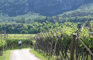 Magnalonga: il primo settembre bici con soste del gusto in Vallagarina