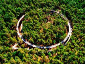 In Belgio, dove l'anello ciclabile è sospeso in mezzo alla foresta