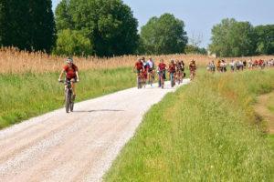 Adria Bikes Hotel: cicloturismo tra terra e acqua nella Laguna di Venezia