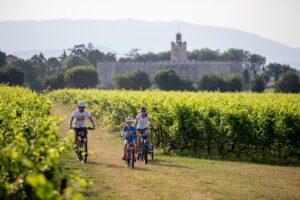Idea weekend: la scoperta della Franciacorta in bici, con Itinera Bike